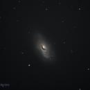 The Black Eye Galaxy,                                Don Curry