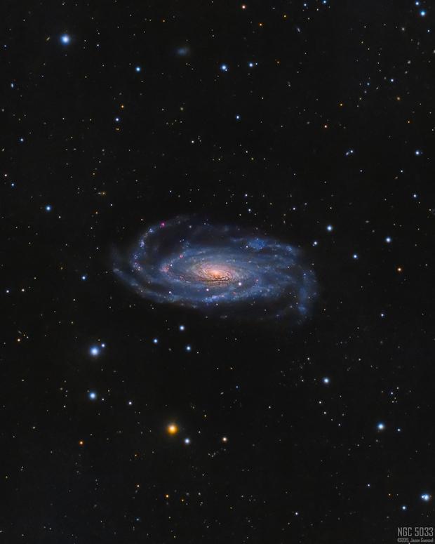 NGC5033 - A Warped Spiral,                                Jason Guenzel