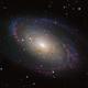 M81 - Revised,                                Patrick Phelan