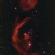 Emissionsnebel im Orion (Barnard's Loop, M42 et al.),                                Gerhart