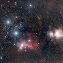 Orion,                                Patryk