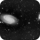 M81 M82 HDR In progress,                                Alexis Carvalho