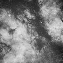 Sadr Region (IC 1318) Nebula in H-a narrowband,                                Michele Vonci