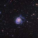 M101 Pinwheel Galaxy,                                Kongyangshik