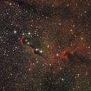 IC1396 - Elephant's Trunk nebula,                                BrunoD