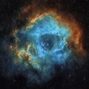 Rosette Nebula in SHO,                                apaletta