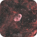 NGC 6888 Cresent Nebula RGB-HOO,                                Michael Caller
