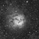 M20 Trifid Nebula - Ha @ various focal length,                                equinoxx