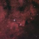 Cederblad 214 (NGC 7822),                                John Leader