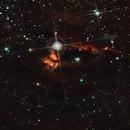 Alnitak, NGC2024, NGC2023,                                Stefano Zamblera
