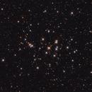 M44 - A beautiful Open Cluster,                                Jan Beckmann