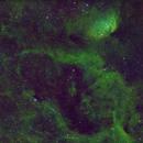 Tulip Nebula SHO,                                Dave Bloomsness