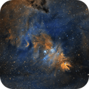 NGC 2264 - The Christmas Tree Cluster,                                pmneo