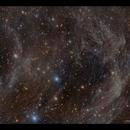 Mandel-Wilson 4: Animal Track Nebula,                                Göran Nilsson