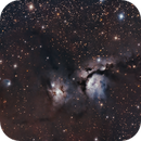 M78 Reflection Nebula,                                Dennis Kaiser