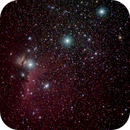Orion Constellation Olympus EM1 Mk1 45mm 1.8f,                                Benjamin Chappell