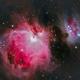 Orion nebula,                                Faus Márquez
