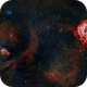 Rosette and Christmas Tree Nebulae from Los Angeles,                                Alex Weinstein