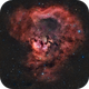 Martyrs' Blood ( NGC 7822 in HaOIIIRGB ),                                Reza Hakimi