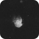 NGC 2174 - The Monkeyhead Nebula,                                Tom Chitty