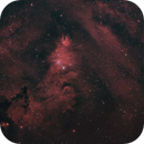 Christmas Tree cluster and the Cone nebula - NGC2264,                                Doversole83
