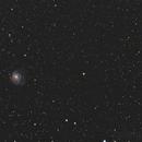 M101,                                Runo