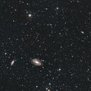 M81 / NGC3031, M82 / NGC3034, NGC3037, NGC2976,                                Stefano Zamblera