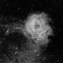 NGC2244 Rosette Nebula,                                Thorsten Glebe