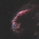 Eastern Veil - Caldwell 33 (L-eXtreme Filter test),                                John Michael Bellisario