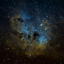NGC1893,                                Rich Sky
