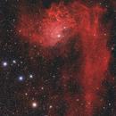 Flaming Star Nebula,                                Scott Tucker