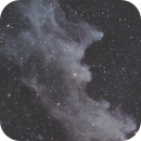 IC 2118 - Witch Head Nebula,                                jeff2011