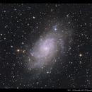M33,                                Kenneth Sneis