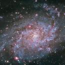 M33 Galaxy,                                Andrea Bergamini