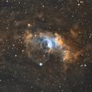 The Bubble Nebula: SHO,                                Mike Kline