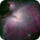 Orion Nebula M42,                                Chris