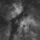 Butterfly Nebula,                                Carl Weber