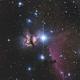 NGC 2024 - IC 434,                                Michael Völker