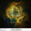Rosette Nebula,                                Eddie_R