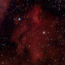 Pelican Nebula,                                scitmon