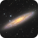 NGC253 - Sculptor galaxy - Sadr  Chili -Newton,                                Arnaud Peel