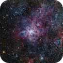 NGC 2070 Tarantula Nebula,                                SCObservatory