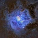 NGC7023 The Iris Nebula,                                Denis Janky