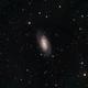 NGC 2903 LRGB,                                jerryyyyy