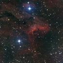 Pelican Nebula,                                MDWingsFan