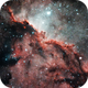NGC 6188 Rim Nebula Fighting Dragons of Ara,                                Carlos Taylor