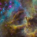 Rosette nebula center,                                Justin Daniel