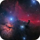 The Horsehead nebula region,                                Francesco Meschia