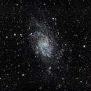 M33: The Triangulum Galaxy (2019),                                Daniel Tackley