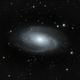 M81,                                Everett Lineberry